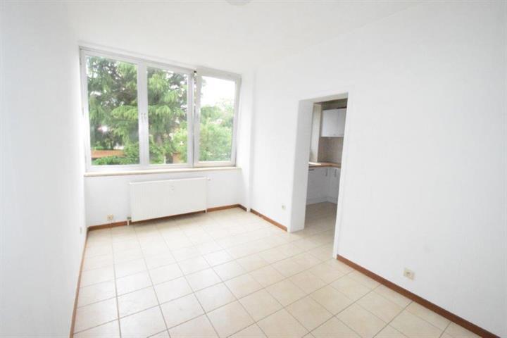 Estate #3771183